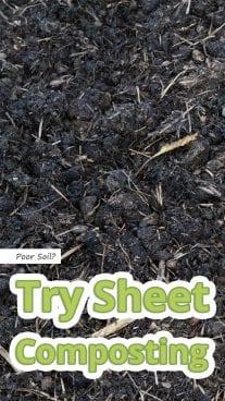 Poor Soil? Try Sheet Composting