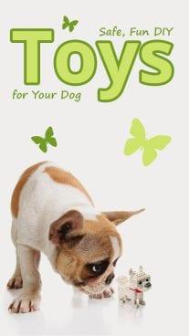Safe, Fun DIY Toys for Your Dog