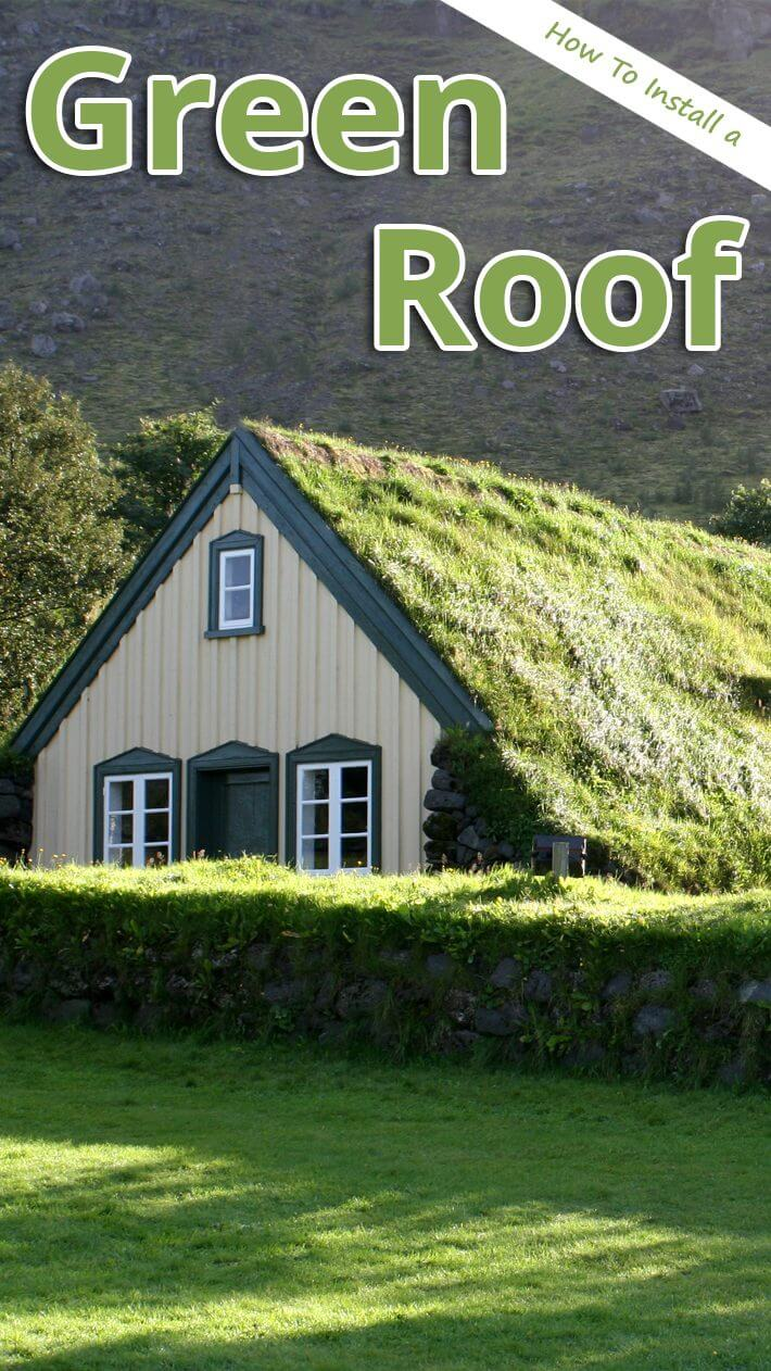 DIY – Green Roof